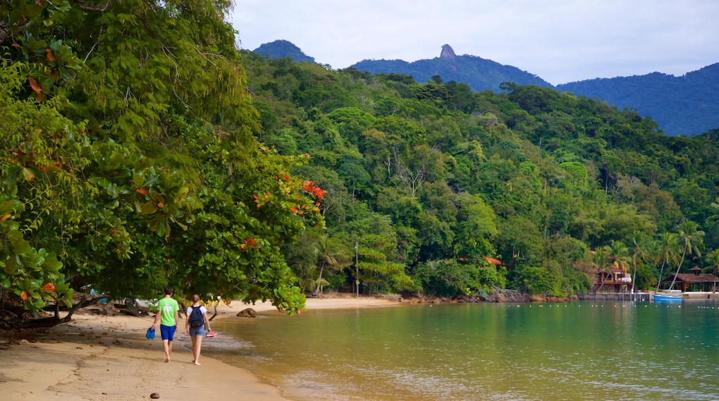 Strand von Abraaozinho mit einem allgemeine Küstenansicht, tropische Szenerien und Sandstrand