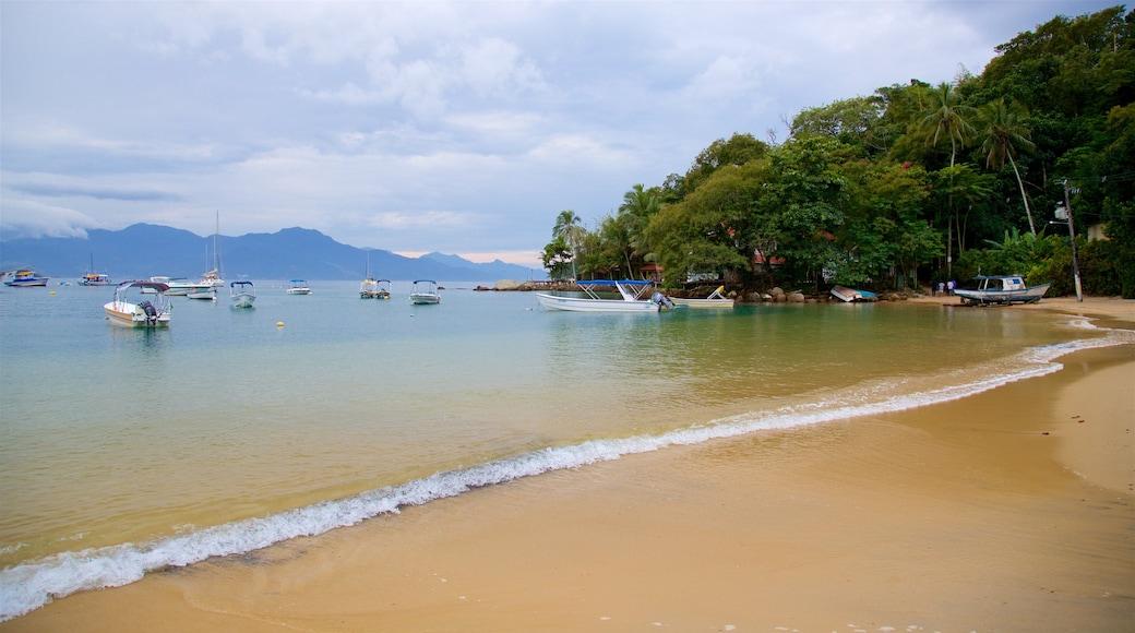 Strand von Abraao das einen Bucht oder Hafen, Strand und allgemeine Küstenansicht