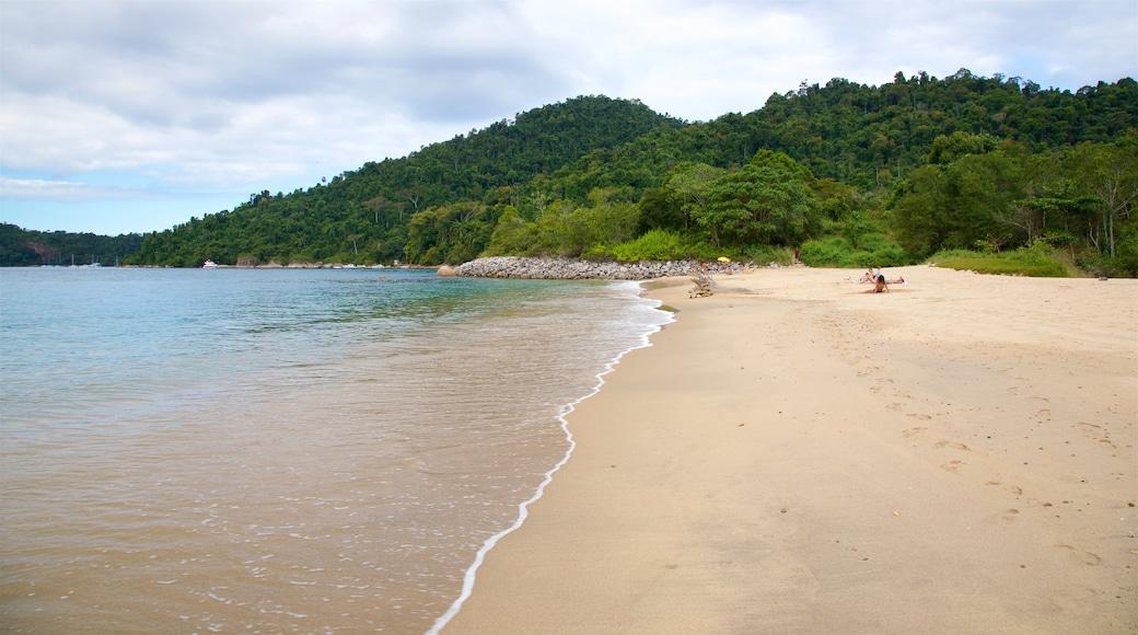 Praia do Laboratorio welches beinhaltet allgemeine Küstenansicht und Strand