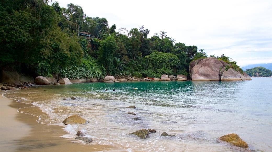 Praia do Laboratorio mit einem Sandstrand, allgemeine Küstenansicht und Felsküste