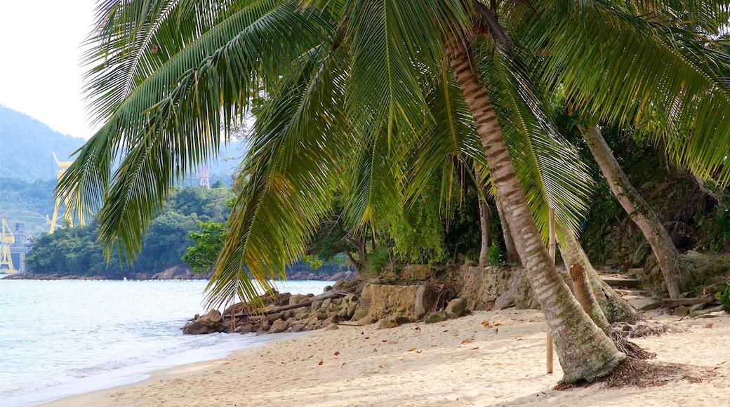 Éguas Strand mit einem tropische Szenerien, Sandstrand und allgemeine Küstenansicht