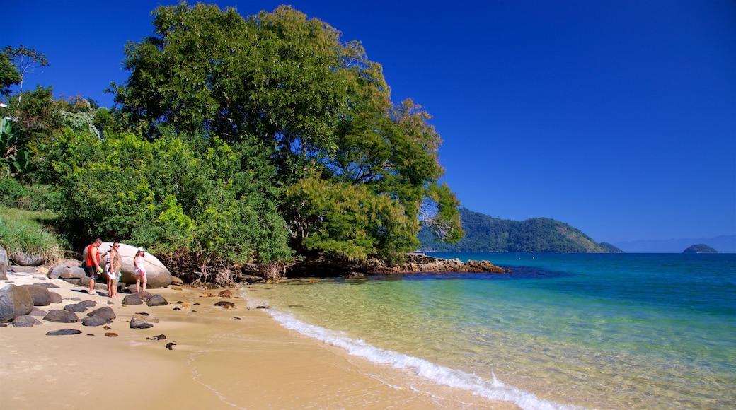 Praia da Figueira das einen Strand, allgemeine Küstenansicht und tropische Szenerien
