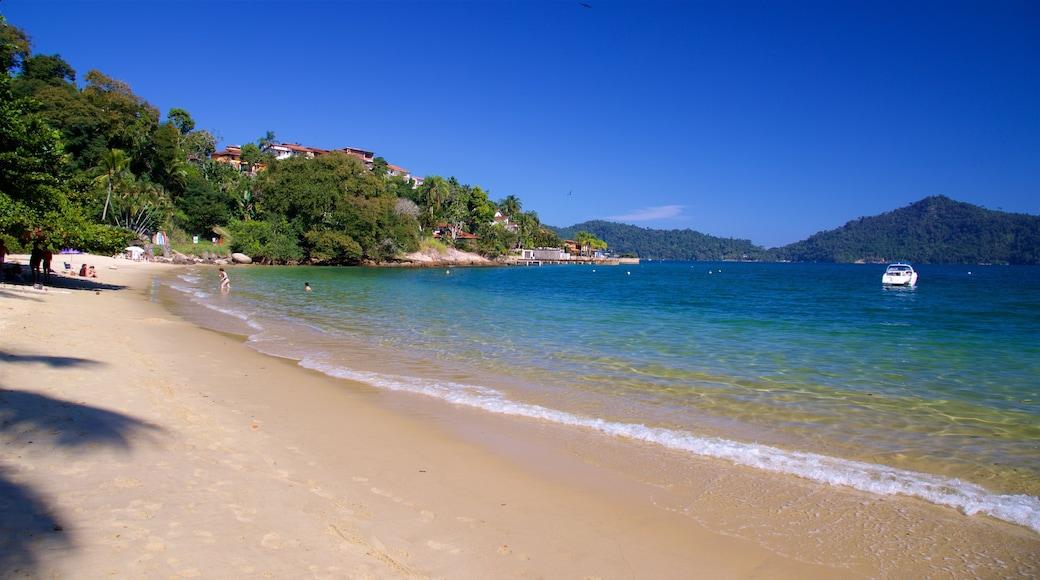 Praia da Figueira welches beinhaltet Sandstrand und allgemeine Küstenansicht