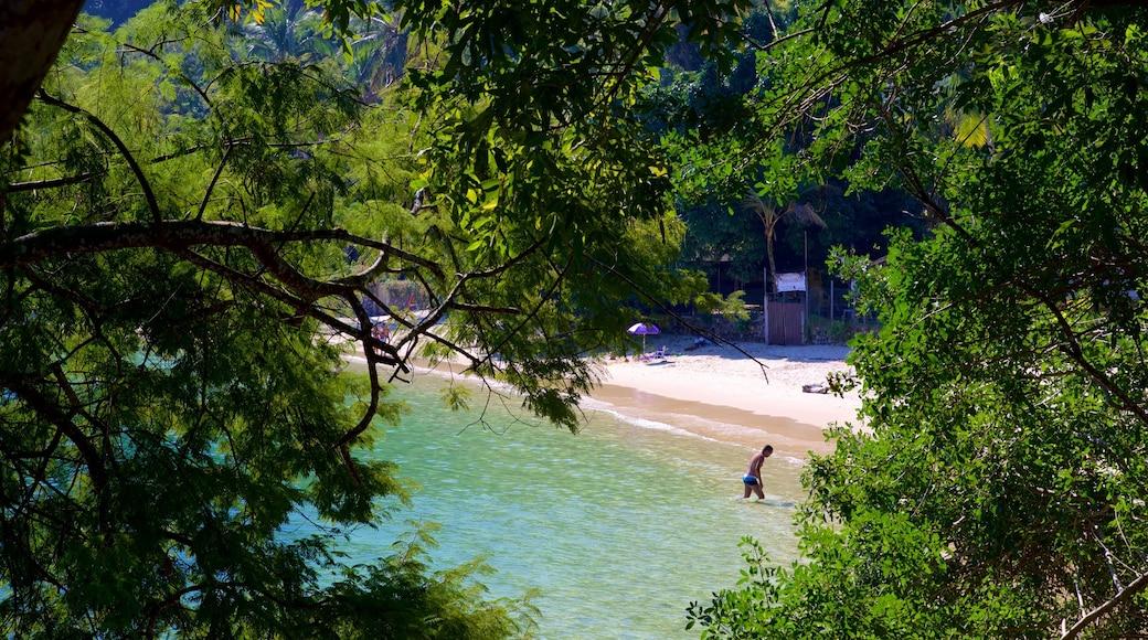Praia da Figueira das einen Sandstrand, Schwimmen und allgemeine Küstenansicht