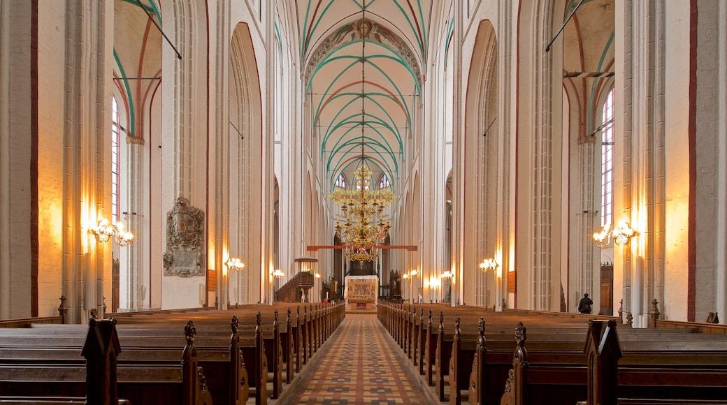 Schweriner Dom welches beinhaltet Geschichtliches, Kirche oder Kathedrale und Innenansichten