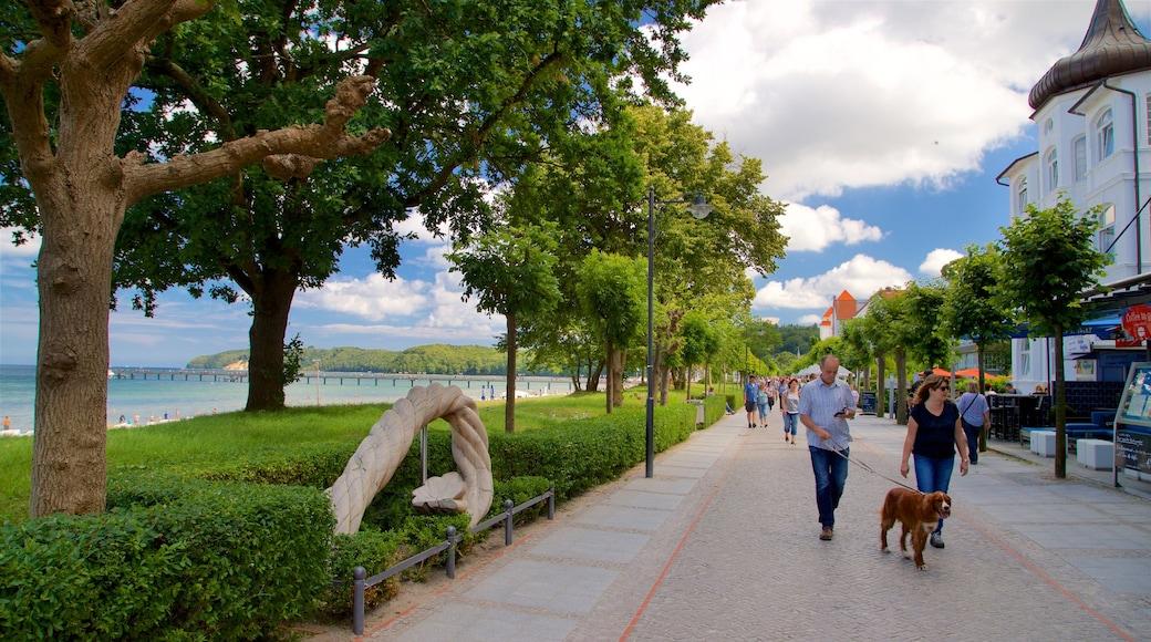 Ostseebad Binz mettant en vedette scènes de rue, vues littorales et animaux domestiques ou inoffensifs