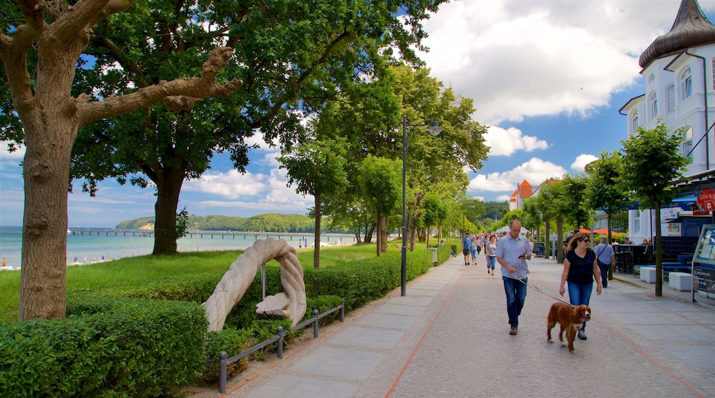 Ostseebad Binz which includes general coastal views, street scenes and cuddly or friendly animals