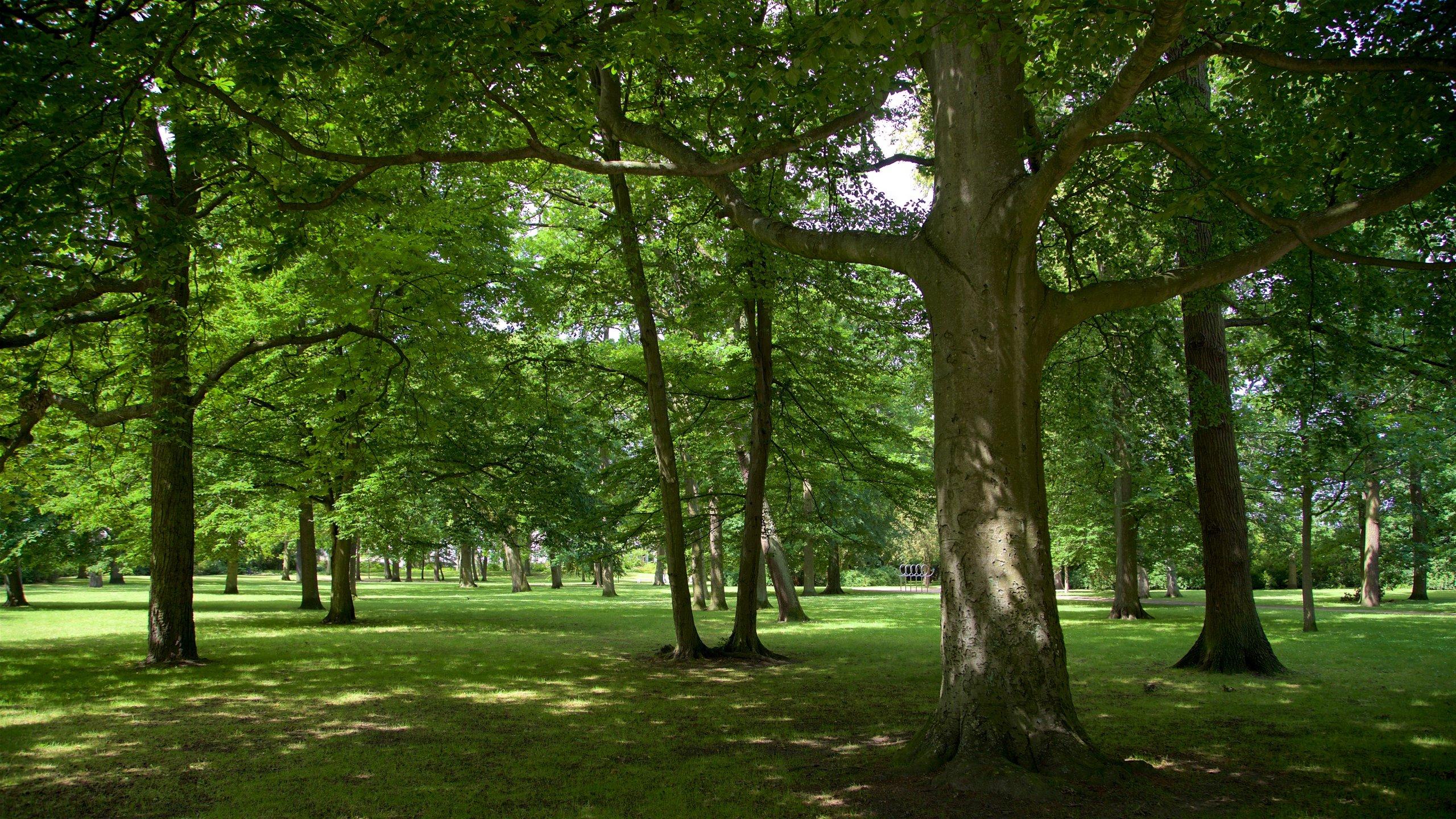 Warnemünder Kurpark, Rostock, Mecklenburg-Vorpommern, Deutschland