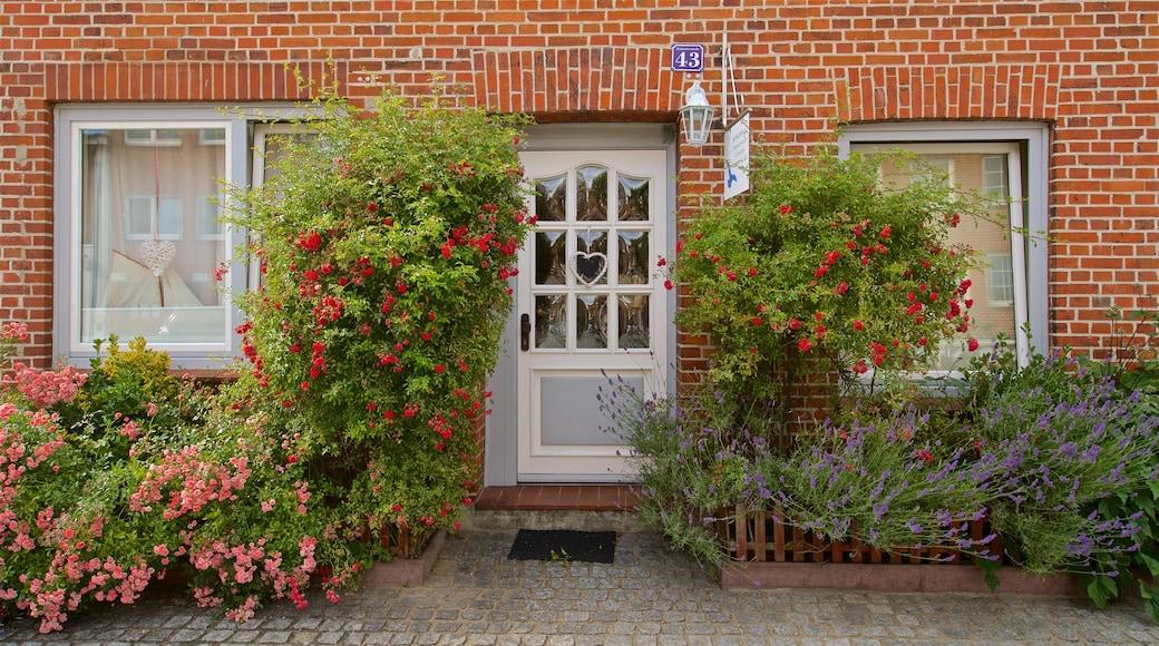 Travemünde johon kuuluu talo ja luonnonvaraiset kukat