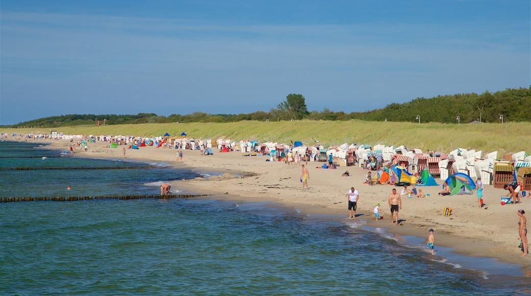 Graal-Müritz welches beinhaltet Strand, Schwimmen und allgemeine Küstenansicht