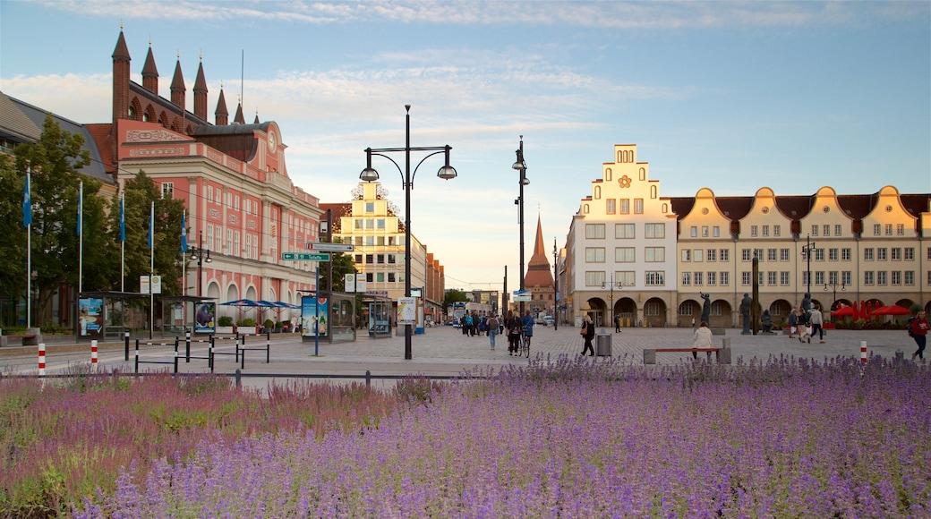 New Market montrant parc, fleurs sauvages et ville