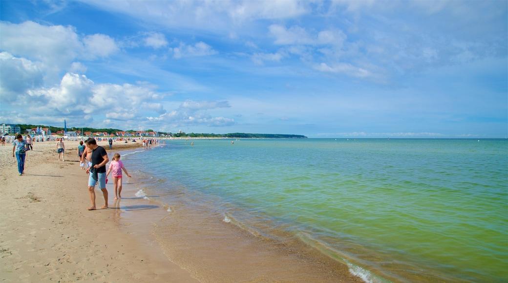 Plage de Warnemunde montrant plage de sable et vues littorales aussi bien que petit groupe de personnes