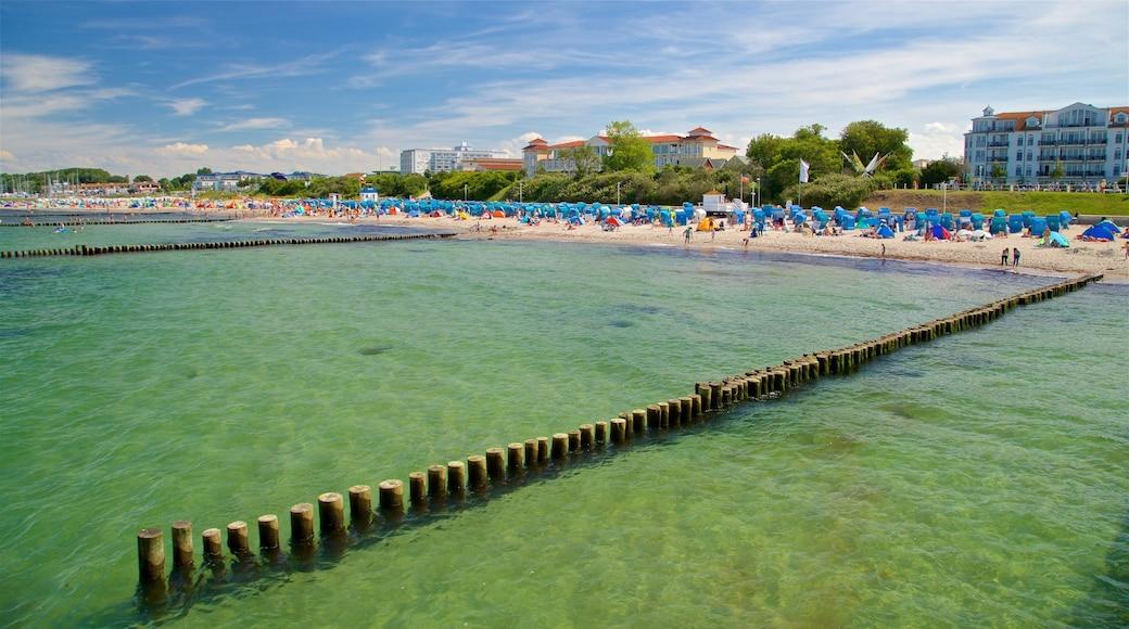 Strand von Kühlungsborn welches beinhaltet Sandstrand, Küstenort und allgemeine Küstenansicht