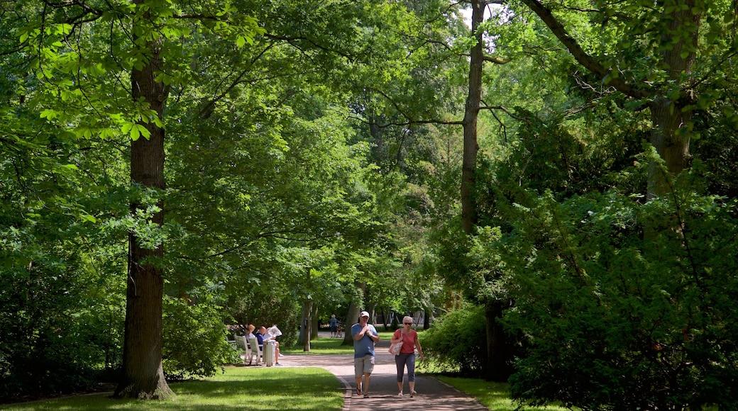 Parc Kurpark Warnemünde qui includes parc aussi bien que couple