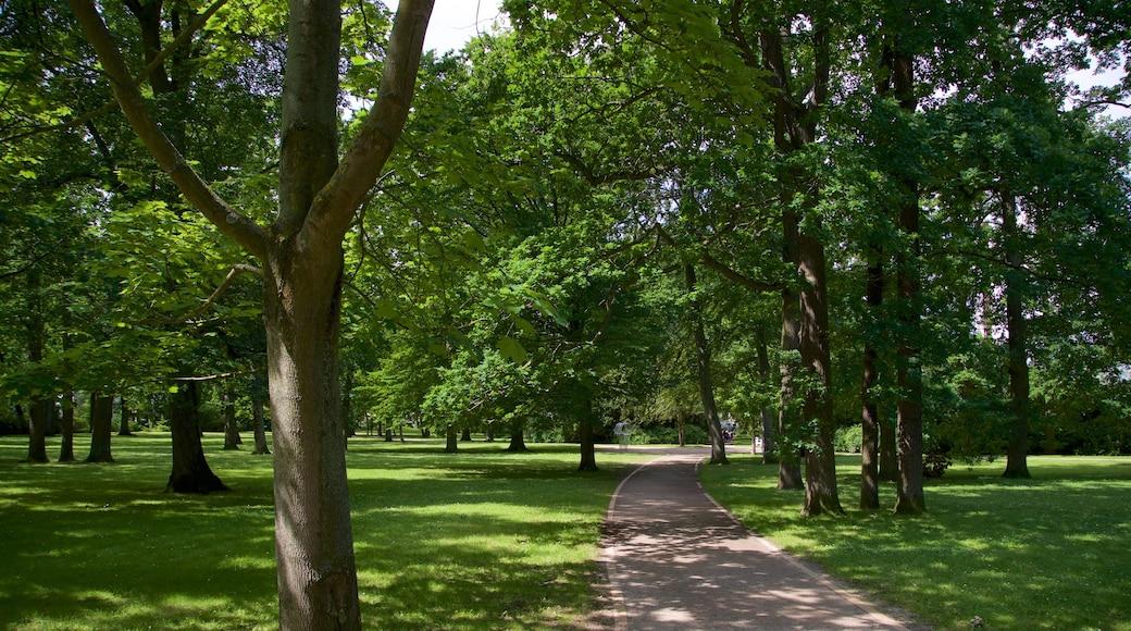 Parc Kurpark Warnemünde qui includes parc