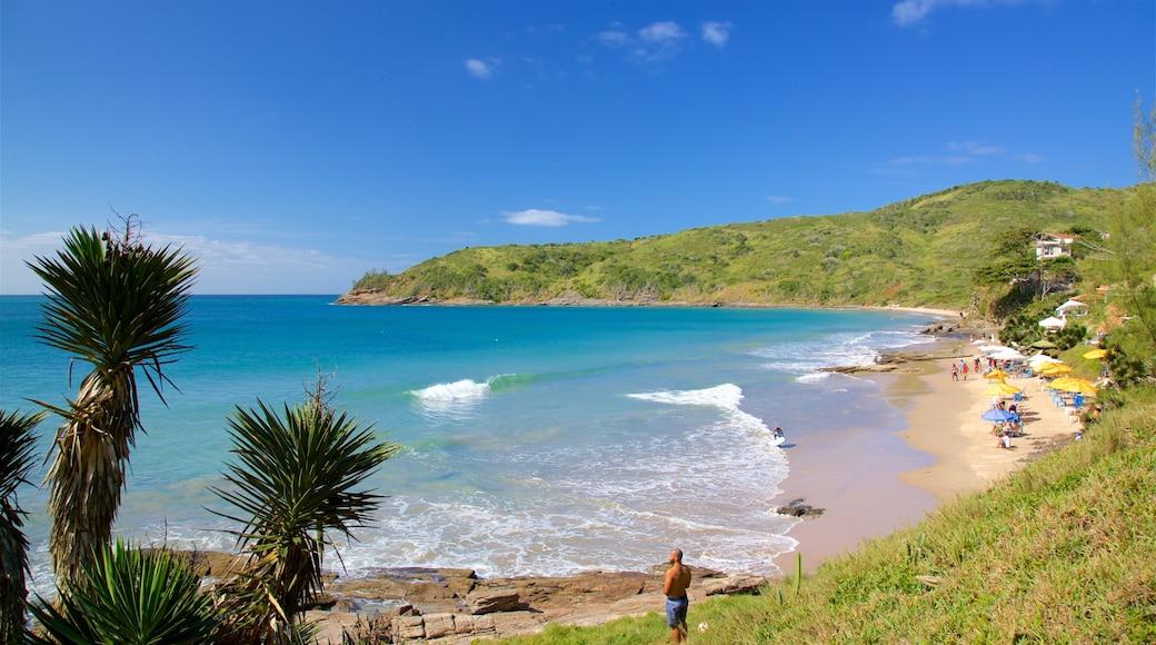 Playa Brava mostrando vista general a la costa y una playa