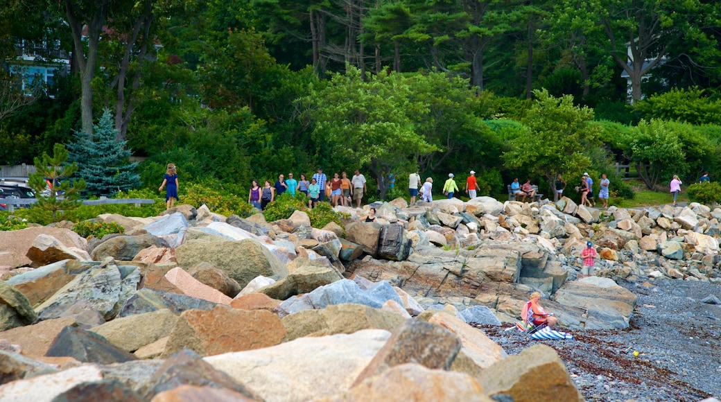 Perkins Cove showing general coastal views as well as a small group of people