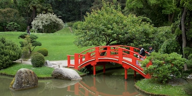 Japanese Garden Toulouse which includes a bridge, a pond and a garden