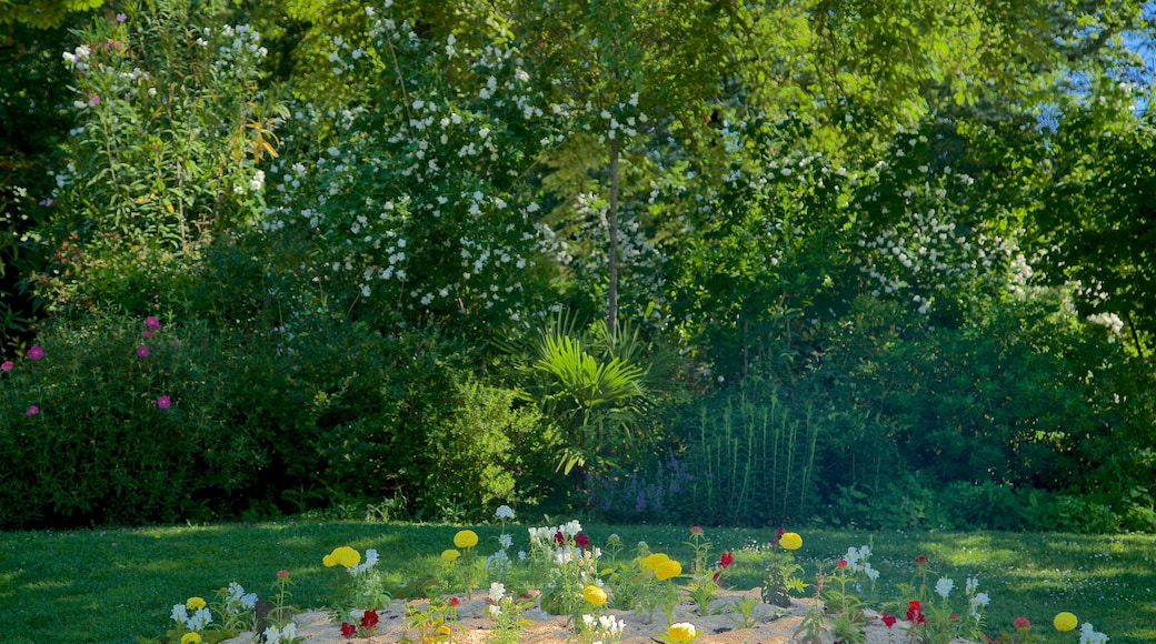 Jardin des Plantes which includes a park and flowers