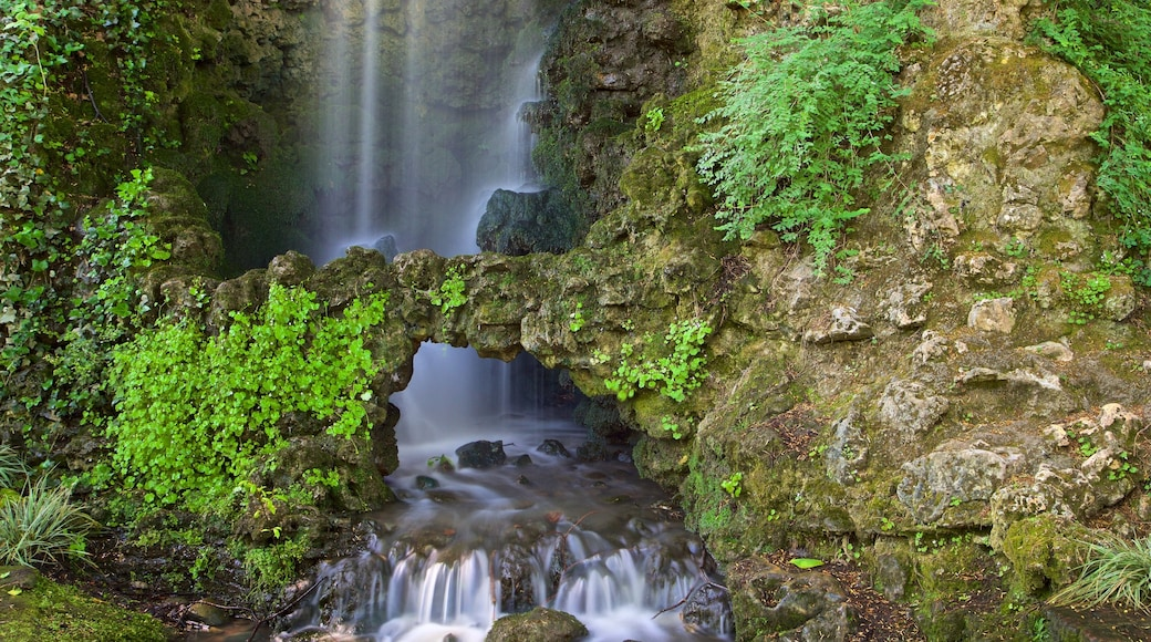 Jardin des Plantes featuring a waterfall