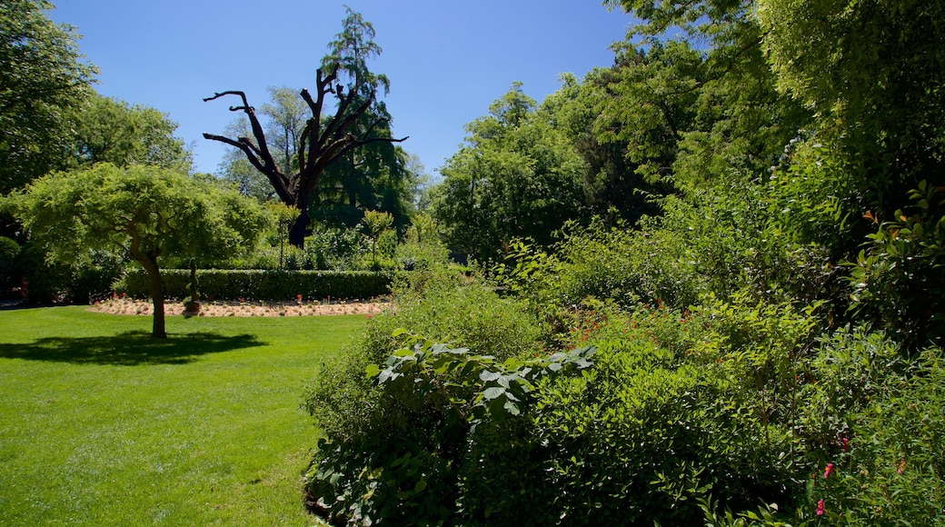 Jardin Royal featuring a park