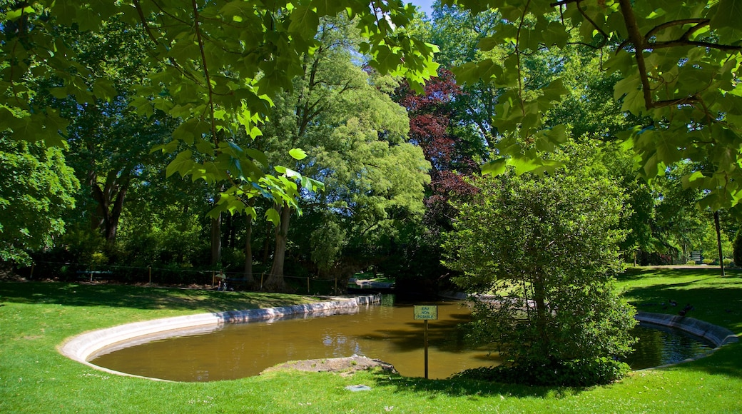 Jardin Royal featuring a pond and a park