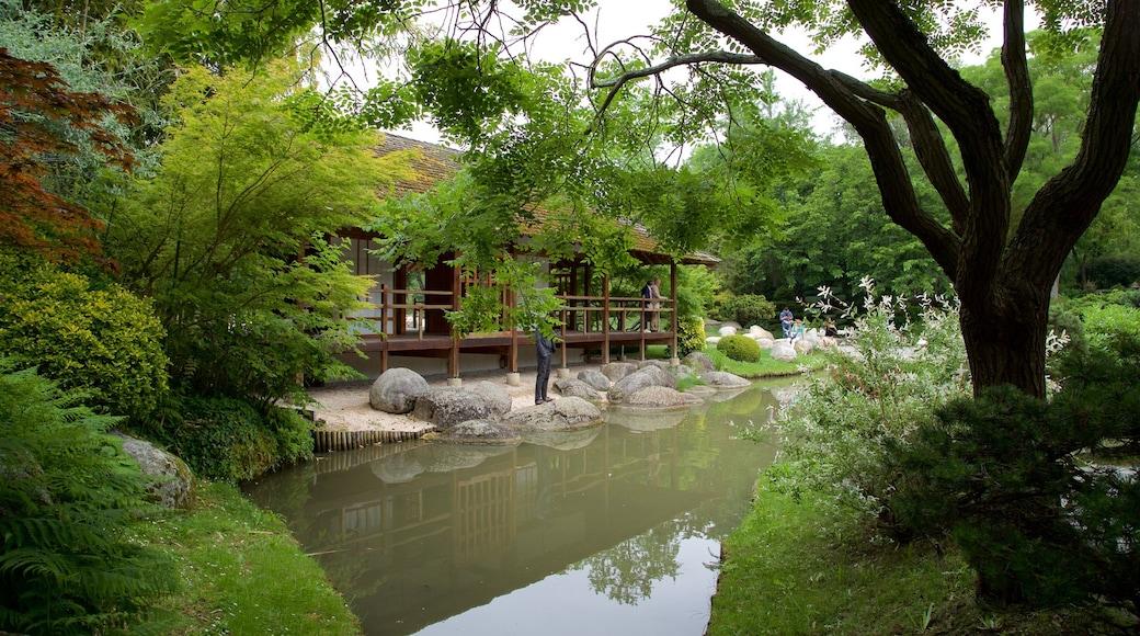 Jardin japonais de Toulouse mettant en vedette mare et jardin