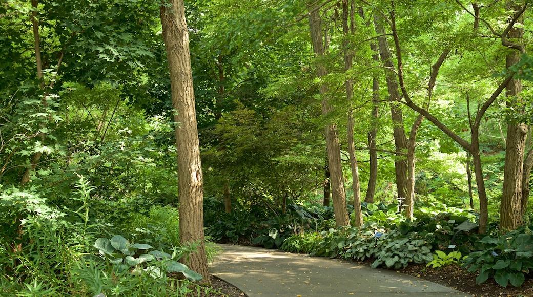 Lauritzen Gardens featuring a garden