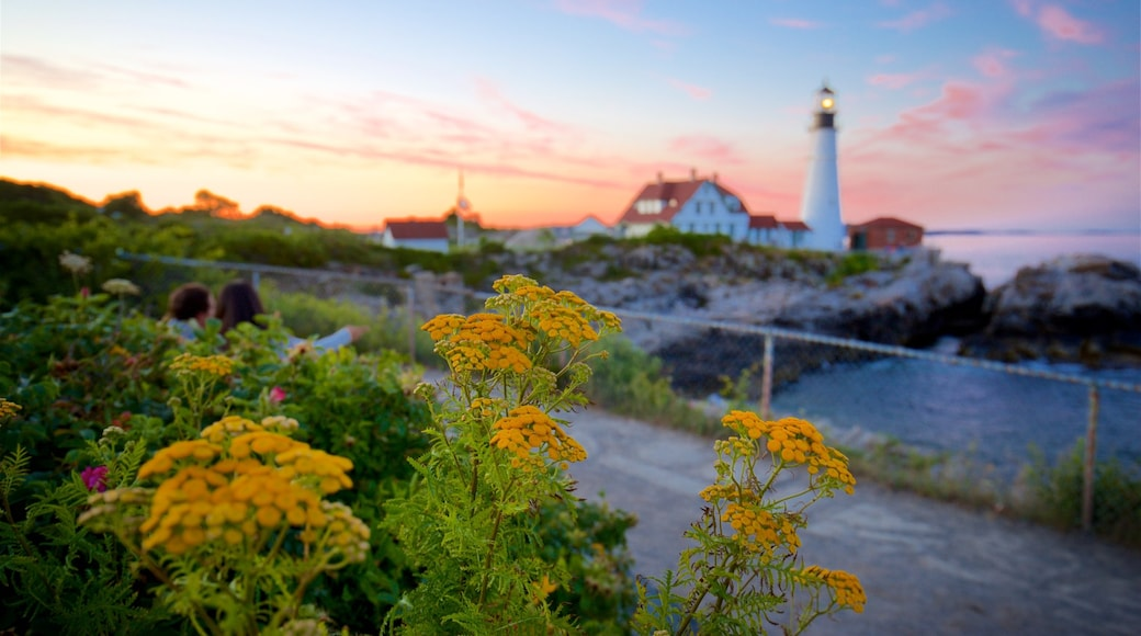 Portland Head Light showing a sunset, wildflowers and general coastal views