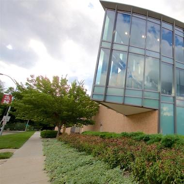 International Quilt Study Center