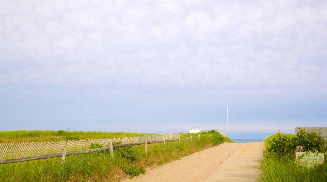 Scarborough Beach State Park showing general coastal views