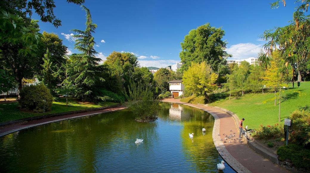 Jardin Lecoq qui includes jardin, vie des oiseaux et rivière ou ruisseau