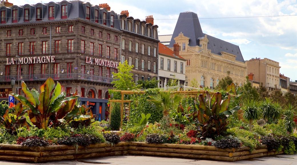 Place de Jaude mettant en vedette fleurs sauvages, patrimoine architectural et jardin