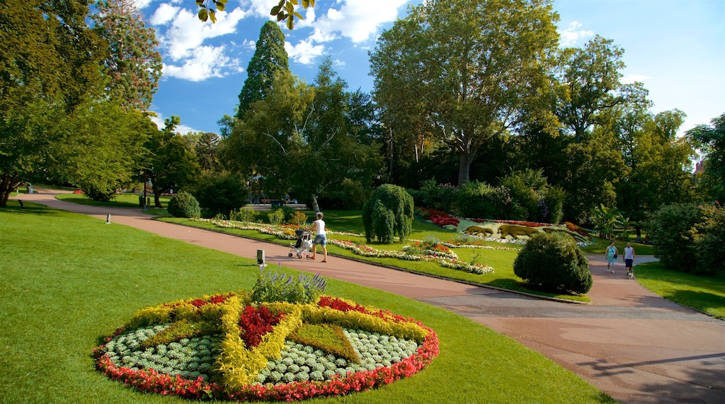 Jardin Lecoq showing hiking or walking, a garden and flowers