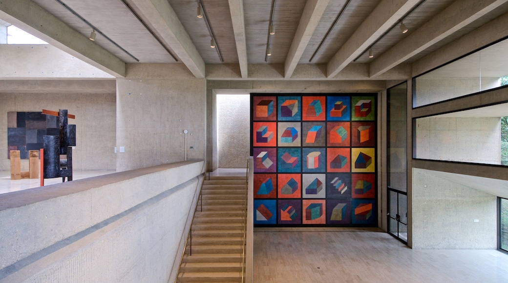 Des Moines Art Center featuring interior views and art
