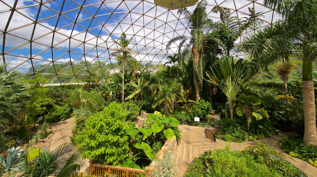 Des Moines Botanical Center showing interior views and a park