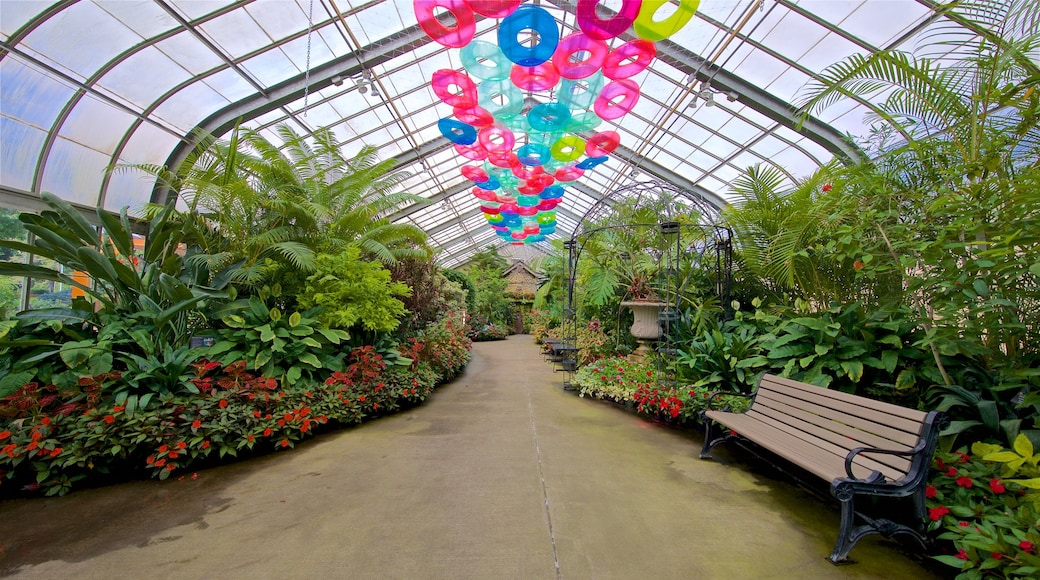 Vander Veer Botanical Park which includes a park, interior views and wildflowers