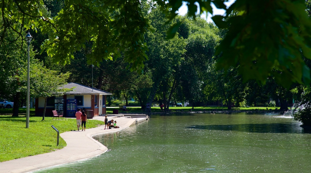 Vander Veer Botanical Park which includes a garden and a lake or waterhole
