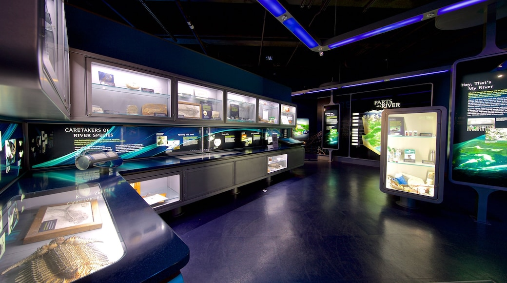 National Mississippi River Museum and Aquarium which includes interior views and marine life