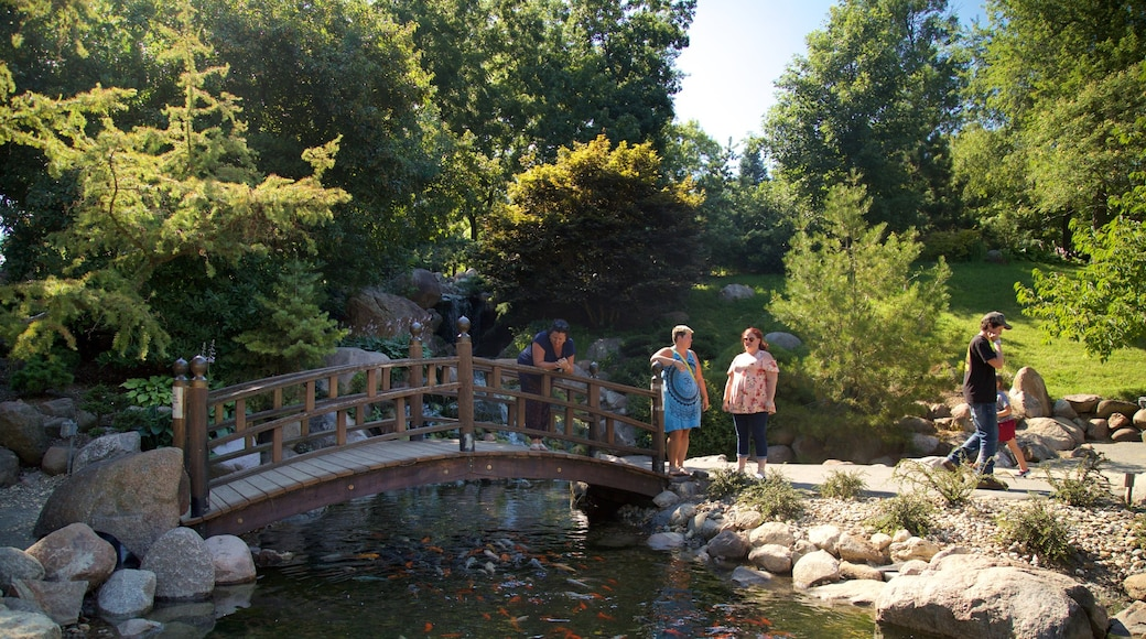 Dubuque Arboretum and Botanical Gardens which includes a river or creek, a garden and a bridge