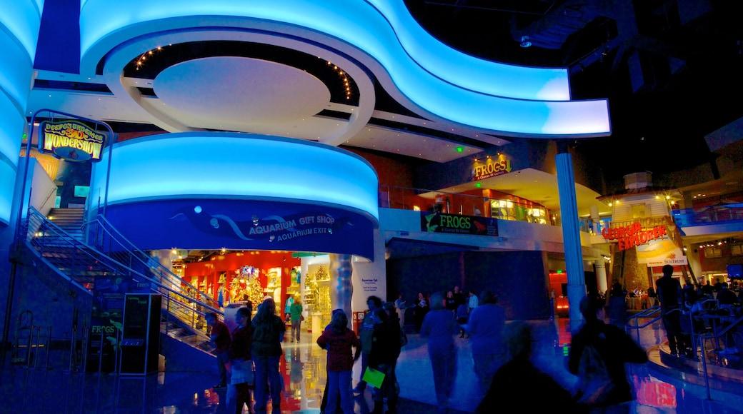 Georgia Aquarium showing modern architecture, night scenes and marine life