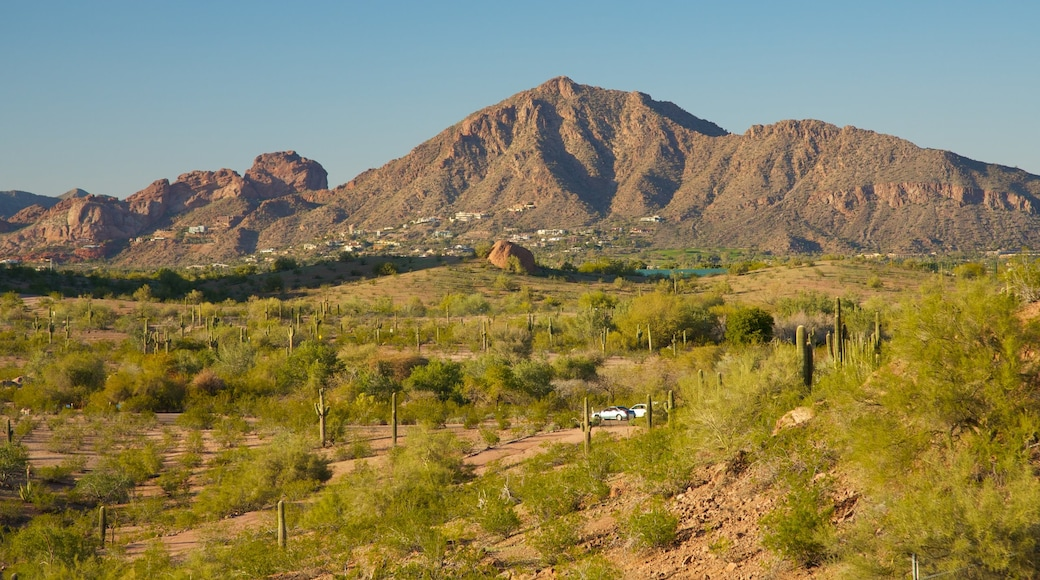 Camelback Mountain which includes landscape views and mountains