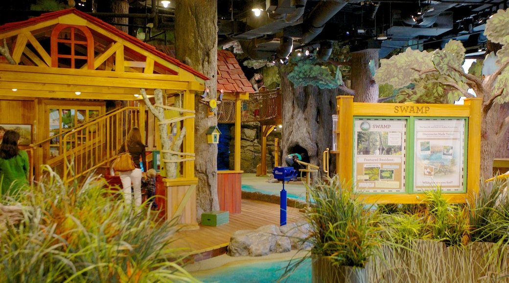 Fernbank Museum of Natural History featuring interior views