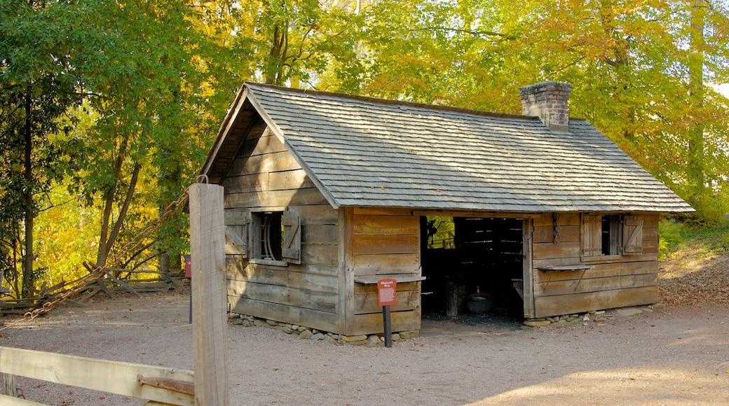 Atlanta History Center showing autumn colours, forest scenes and landscape views