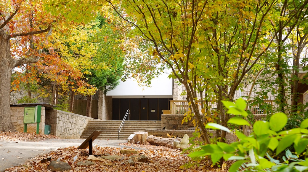Fernbank Science Center featuring landscape views and autumn leaves