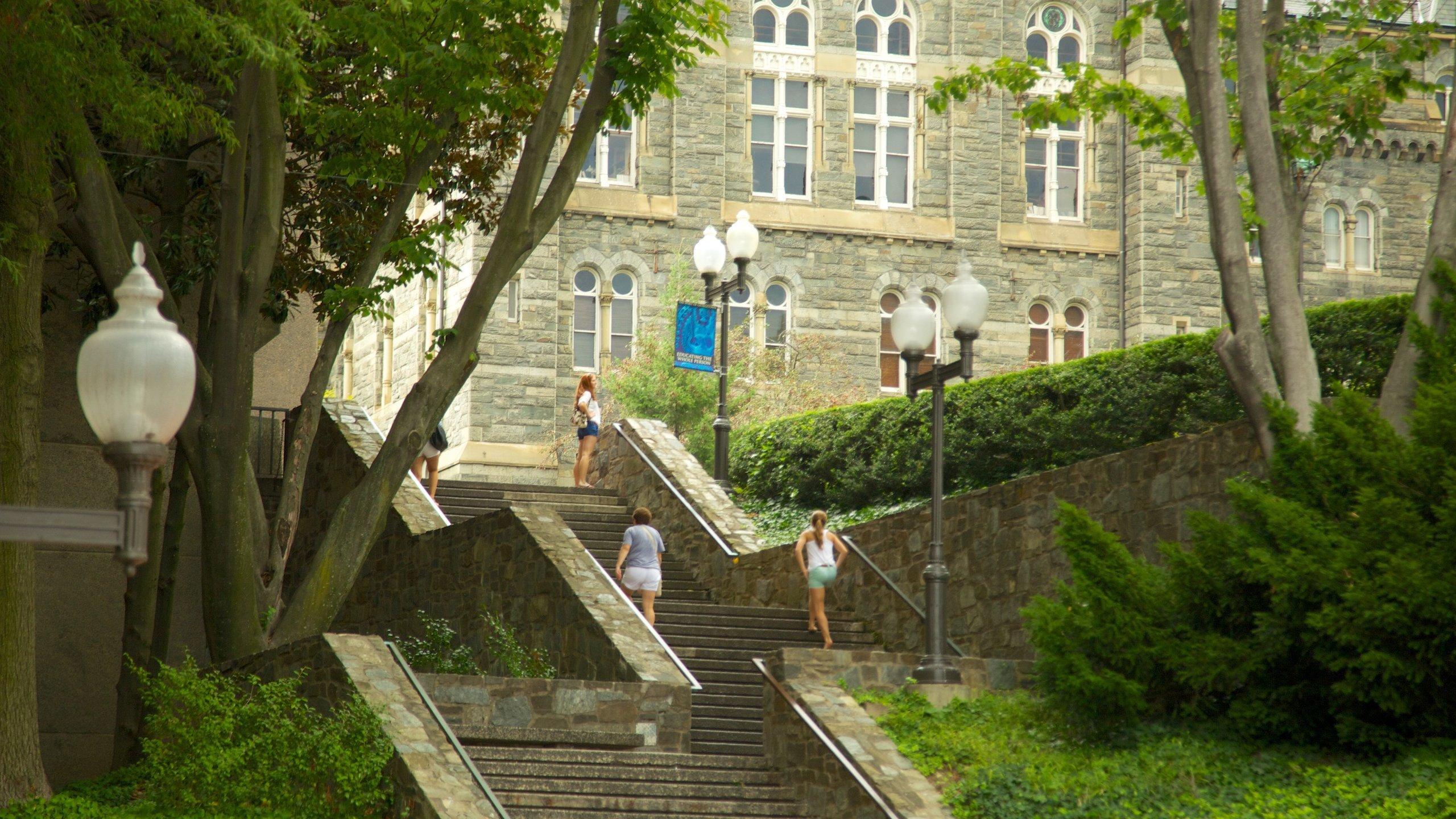 Georgetown University, Washington, District of Columbia, United States of America