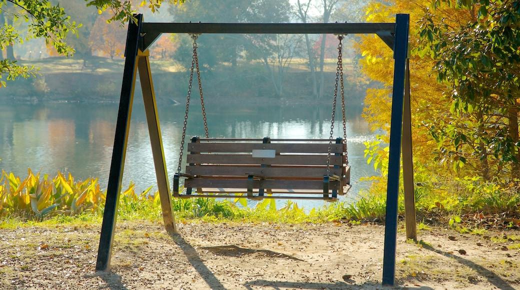 Piedmont Park featuring a park, landscape views and autumn colours
