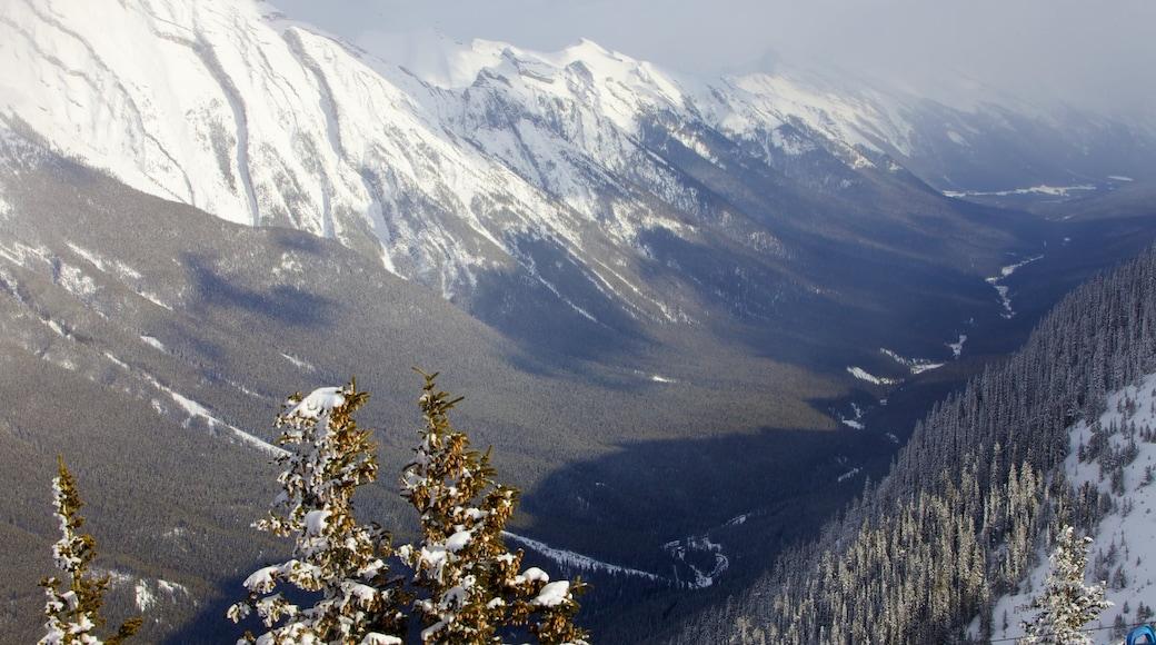 Banff Gondola showing snow, mountains and landscape views