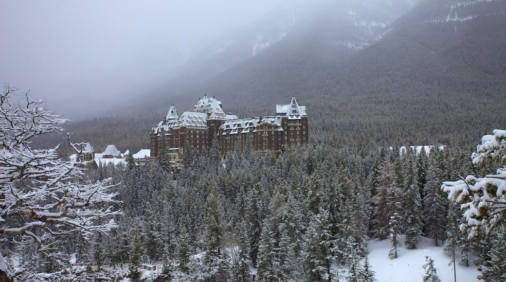 Banff National Park showing snow, mist or fog and landscape views