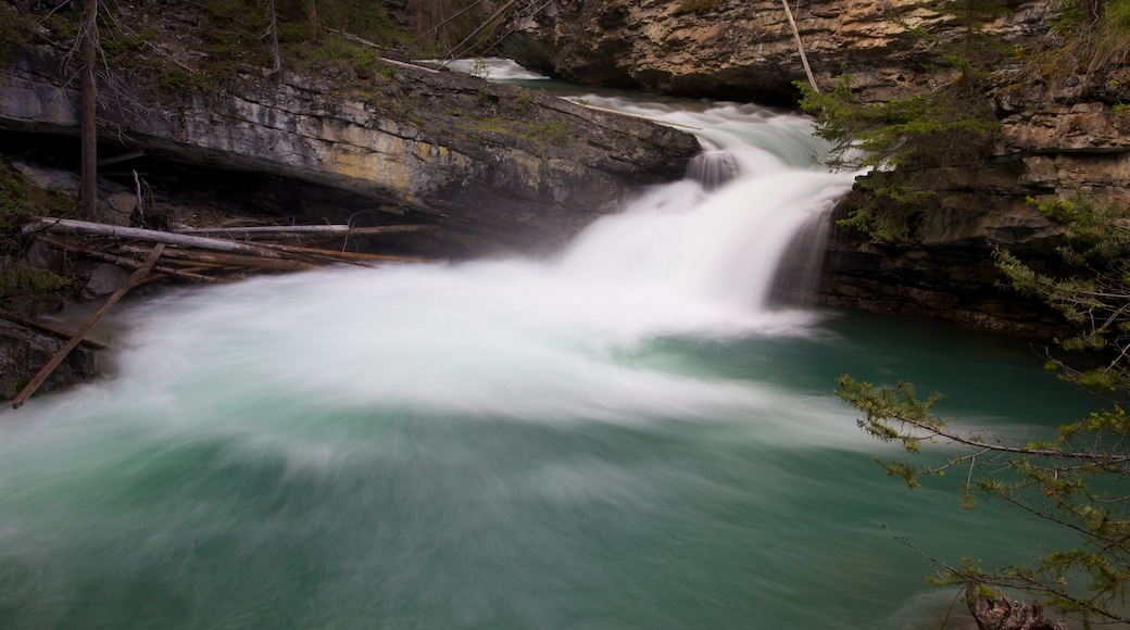 Johnston Canyon which includes landscape views, a waterfall and a gorge or canyon